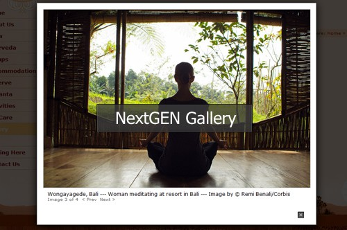 Usando  NextGen Gallery Plugin de WordPress