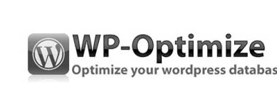Liberador de espacio en su base de datos de WordPress con WP-Optimize