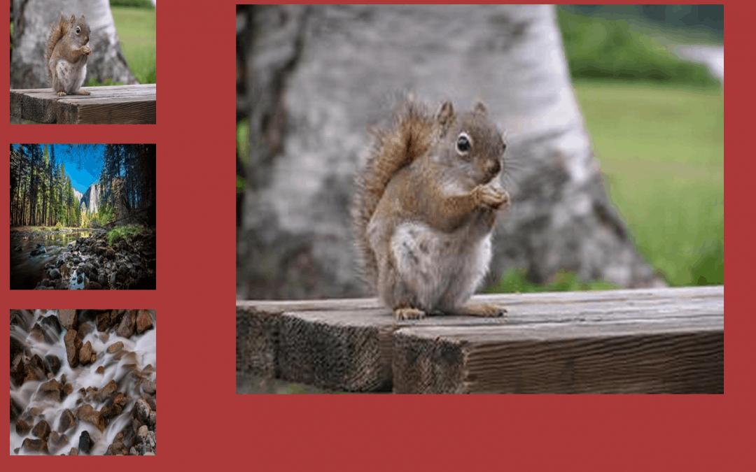 CSS3 Imágenes y Transiciones